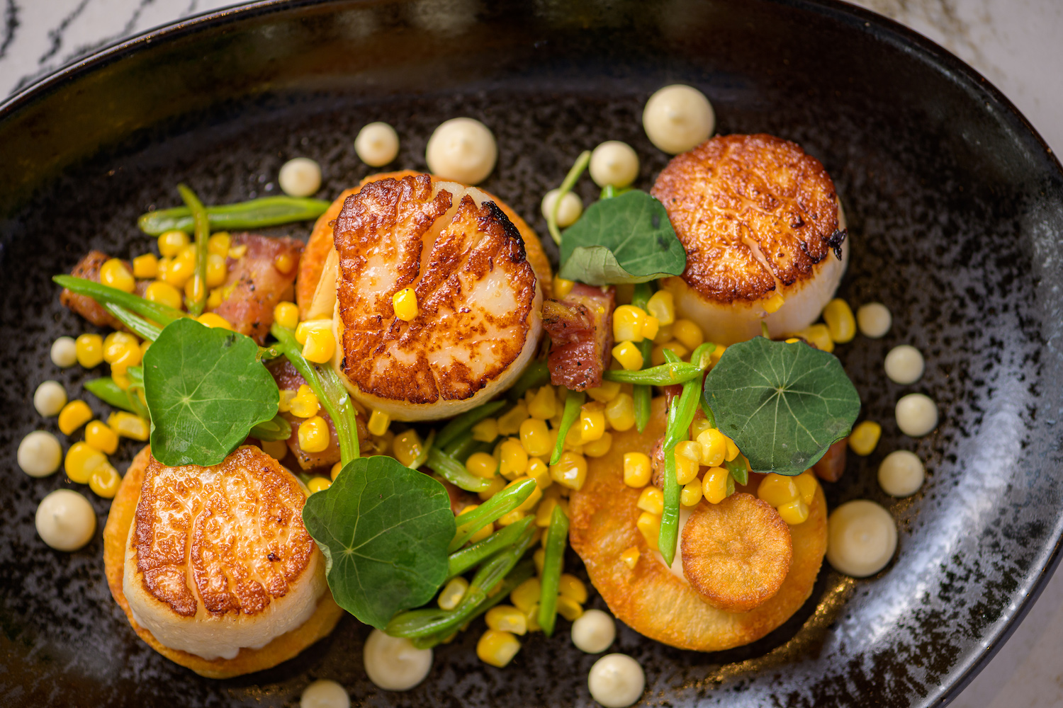 Seared scallops from Berkeley Boathouse. Photo: Chris Shmauch