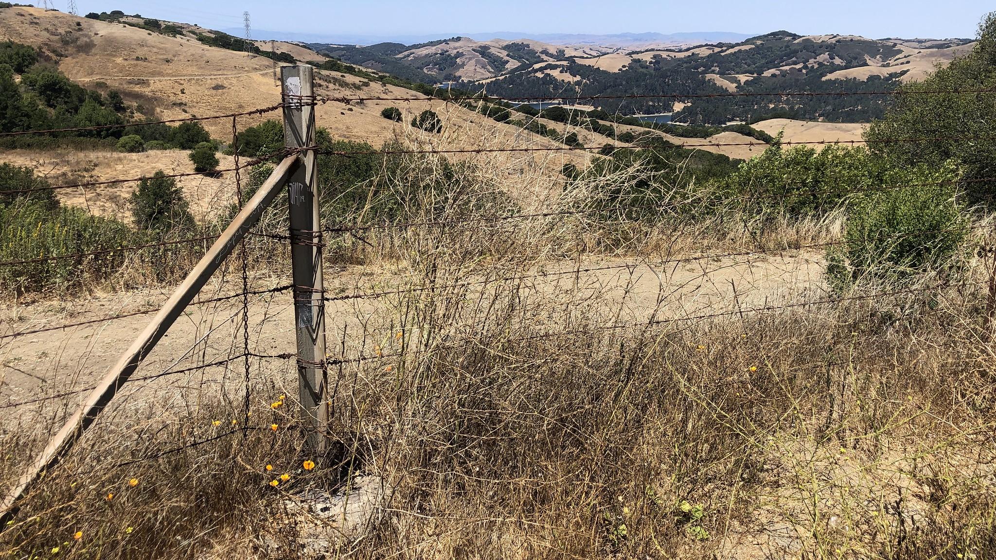 A golden brown California hill