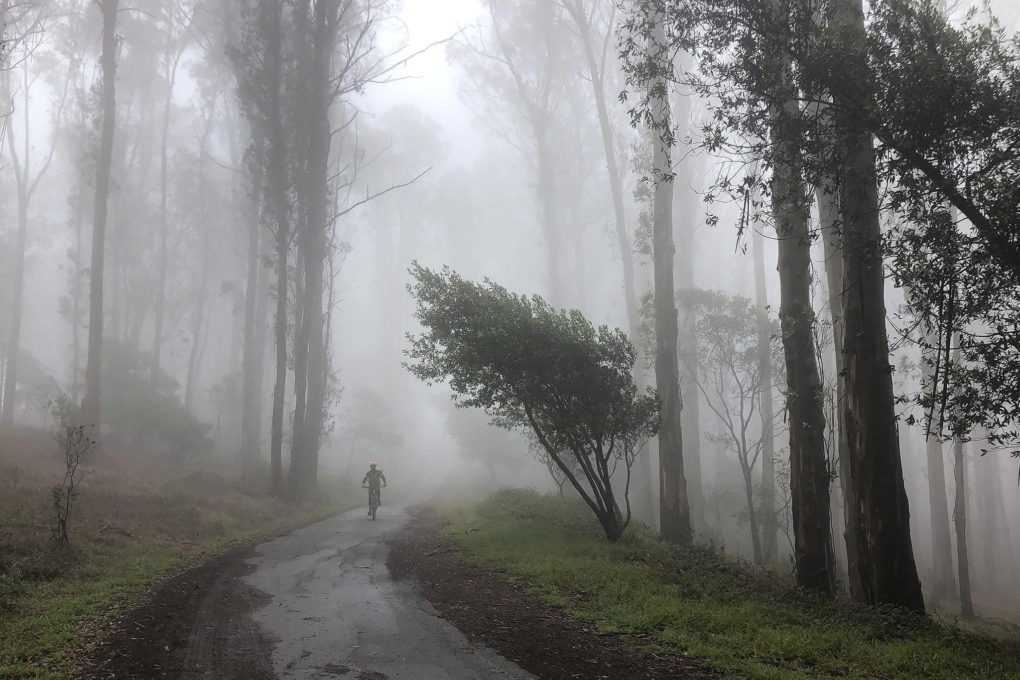 man biking on a trail in the fog